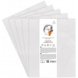 Papier akwarelowy w arkuszach 350x500 PALAZZO Elite Art Bawełna 100% 300g/m2 - BA-2163 - foto.1